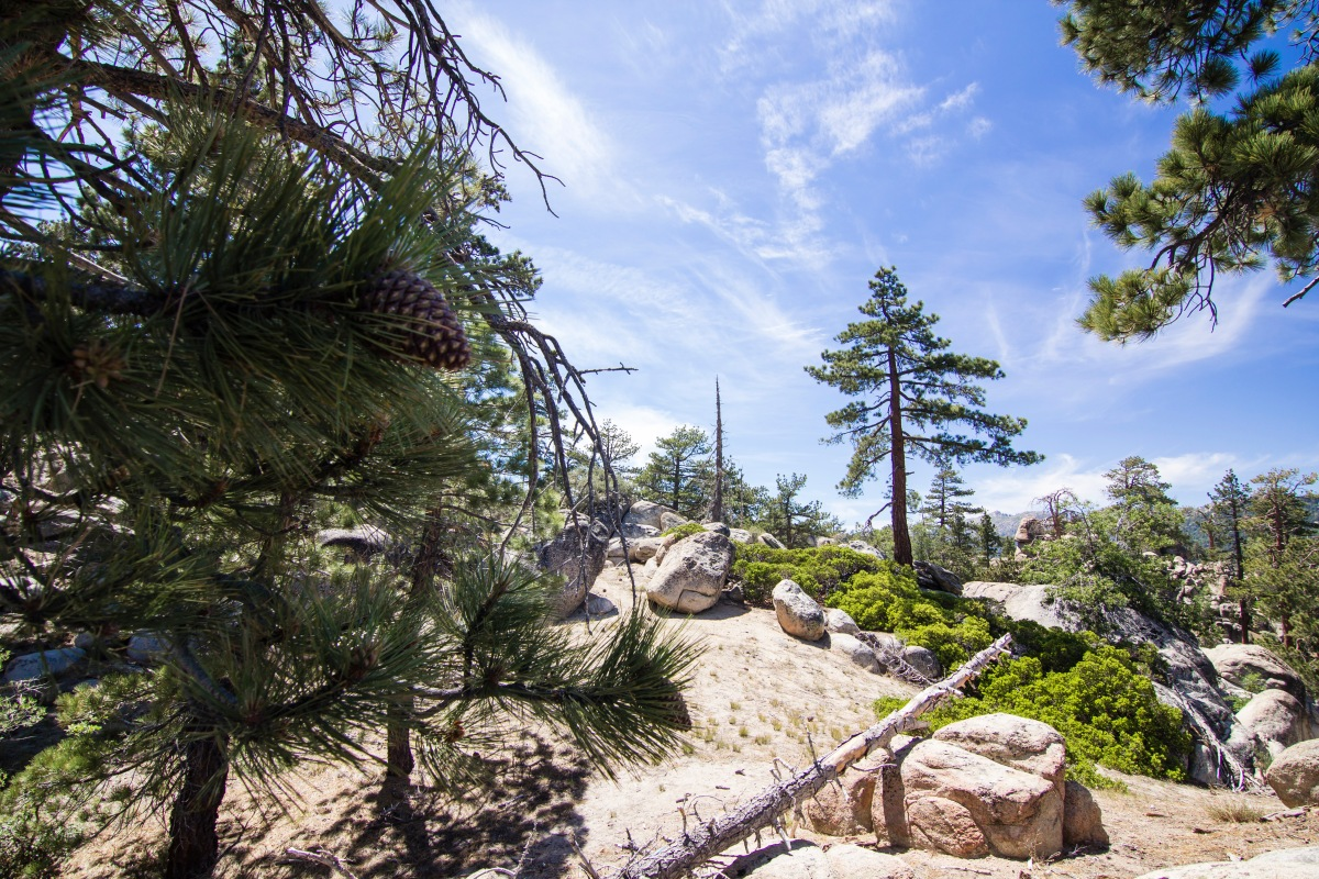 Big Bear, California - Cabins, Lakes, and Free Parking