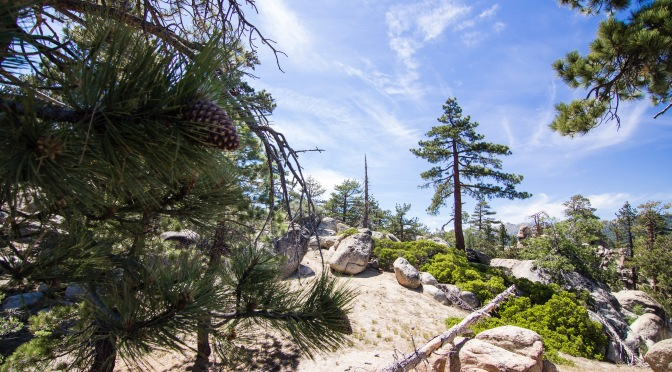 Big Bear, California – Cabins, Lakes, and Free Parking